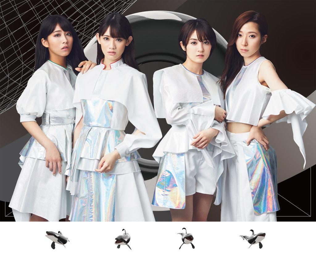 2010_team_shachi_main